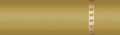 2240s gold cpo.png