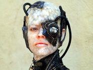 Seven Borg