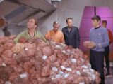 The Trouble with Tribbles