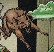 Rat Malibu Comics