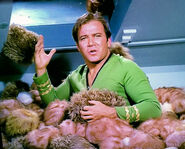 KirkTribbles