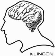 Klingon brain diagram (23rd century)