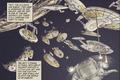 Terran Alliance fleet.png