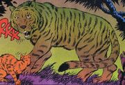 Tiger DC Comics