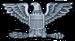 US o-6 rank pin