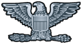 US o-6 rank pin