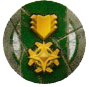VeteranToken green