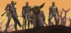 Yoda Clones Rugosa