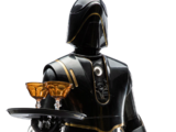 SE8 waiter droid