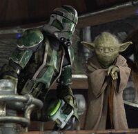 Gree Yoda confer
