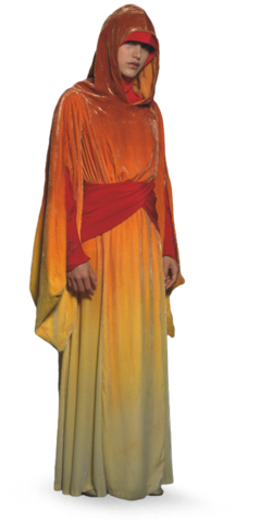 File:Naboo Royal Handmaiden.png