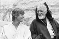 HamillGuinness-MOSW.png