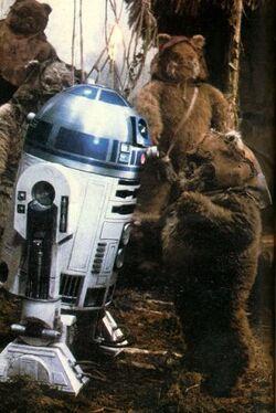 Wicket R2