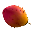 Meiloorun fruit.png