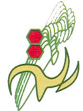 Slayn Korpil