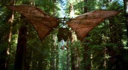 Ewok Glider1