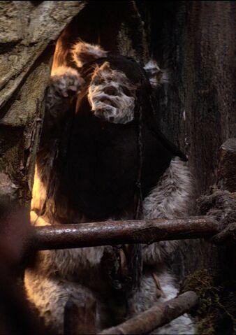 File:Maternal Ewok 1.jpg