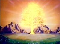 The Tree of Light
