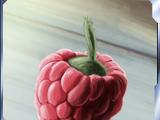 Wasaka berry/Legends