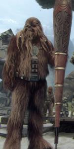 Wookiee shield