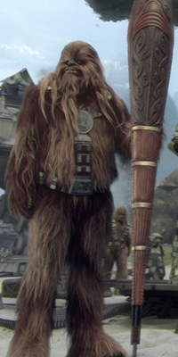 Wookiee shield