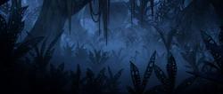 JungleSectorS11