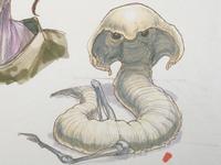 Cliffborer worm