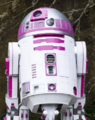 R2-KT set photo.png