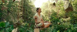 Rey meditates