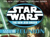 The New Jedi Order: Force Heretic III: Reunion