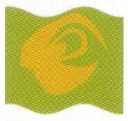 Mars Guo flag