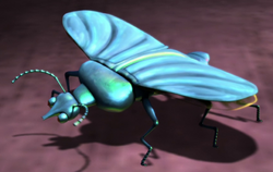 Slug-beetle2