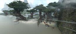 Landscape kashyyk2
