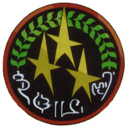 Sector Rangers Insignia2