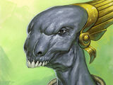 Draethos (species)