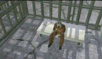 Zann Prison