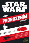 Before the Awakening Czech cover
