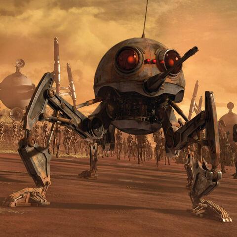 File:Dwarf Spider Dwarf.jpg