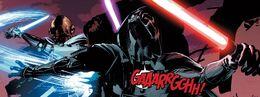 Karbin vs Vader