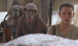 Athgar Heece and Rey on Jakku