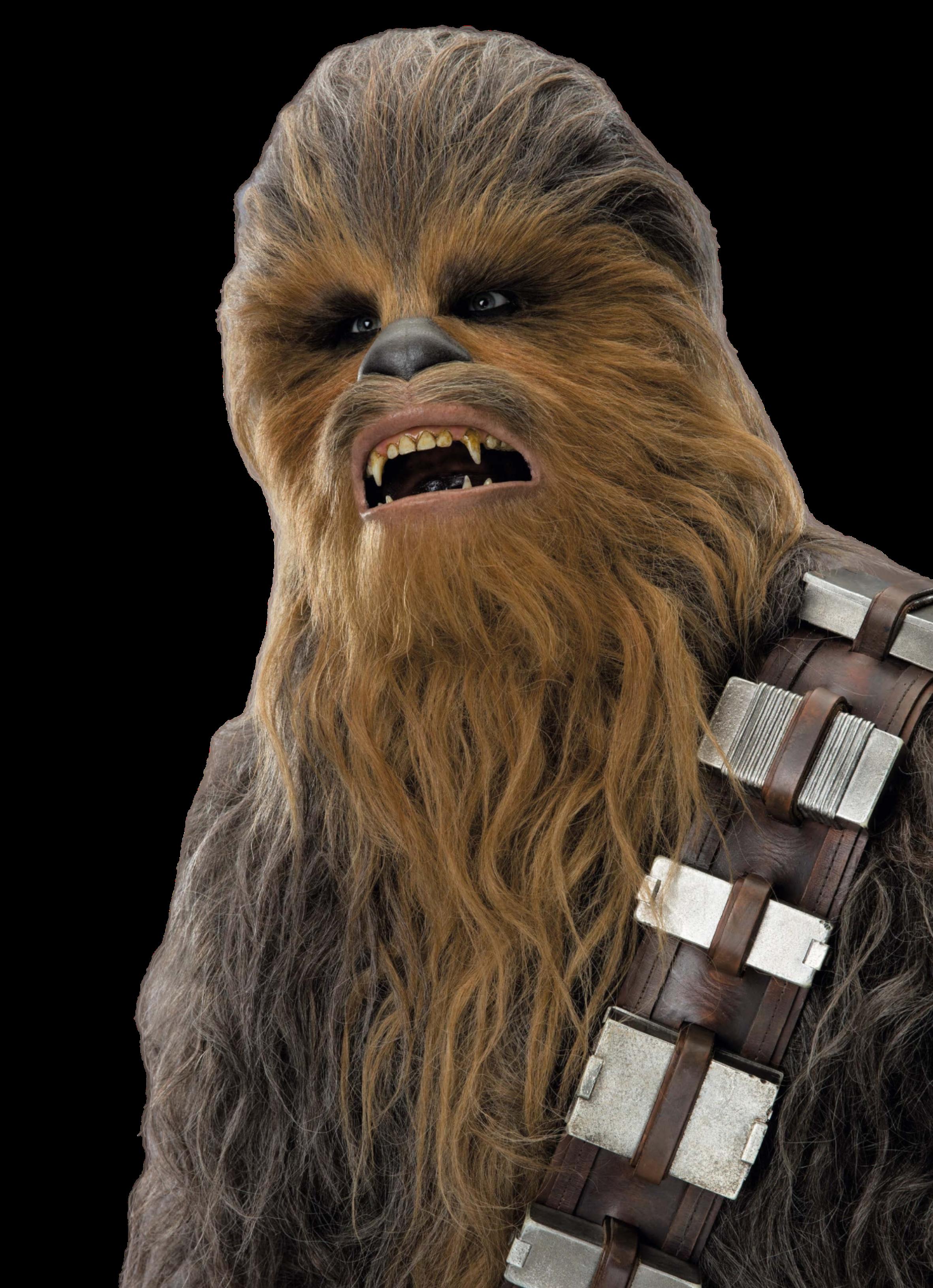 Disney Infinity 3.0 Star Wars Chewie Chewbacca Web Code Card