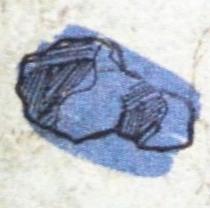 File:Rubidium purple.jpg