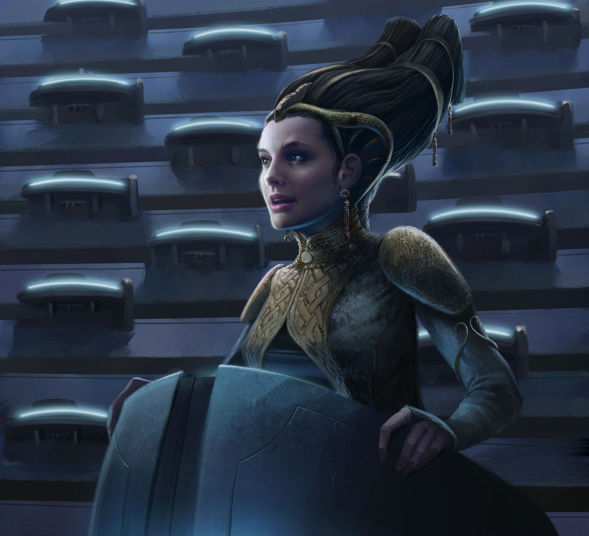 "Large,Age 8-10,HEIGHT 4' 8"" 5/' Star Wars Kids Padme Amidala Costume Style 2"