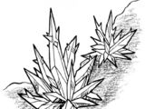Anothian living crystal