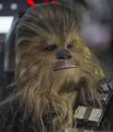 Chewbacca-TFA.png