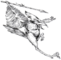 Tikiarri-AlienEncounters