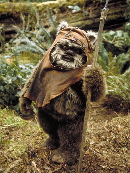 Ewok | Wookieepedia | FANDOM powered by Wikia