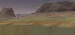 Loklandscape