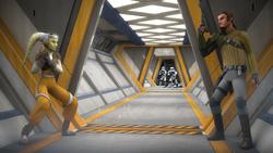 Fight in Nixus Hub 218