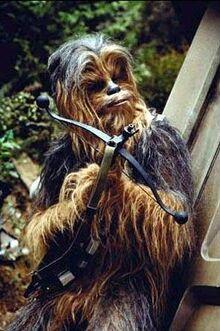 Chewie Endor